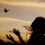 amour-paix-700x452